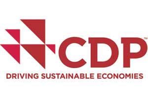 Driving Sustainable Economies